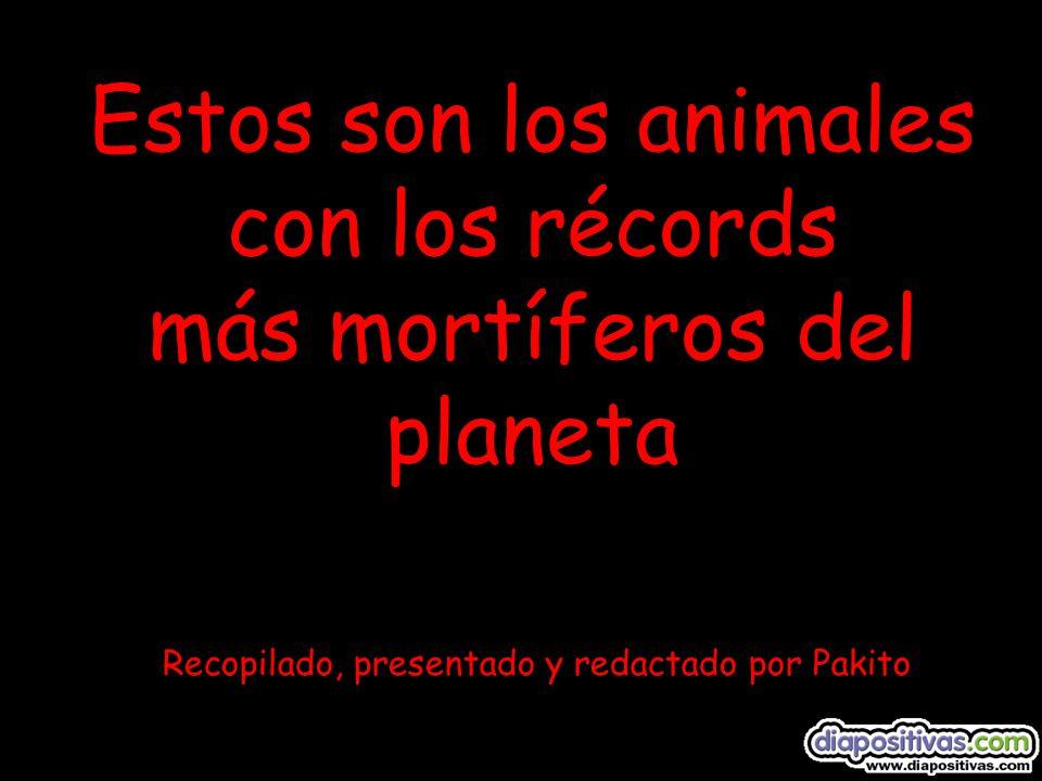 Estos son los animales con los récords más mortíferos del planeta Recopilado, presentado y redactado por Pakito