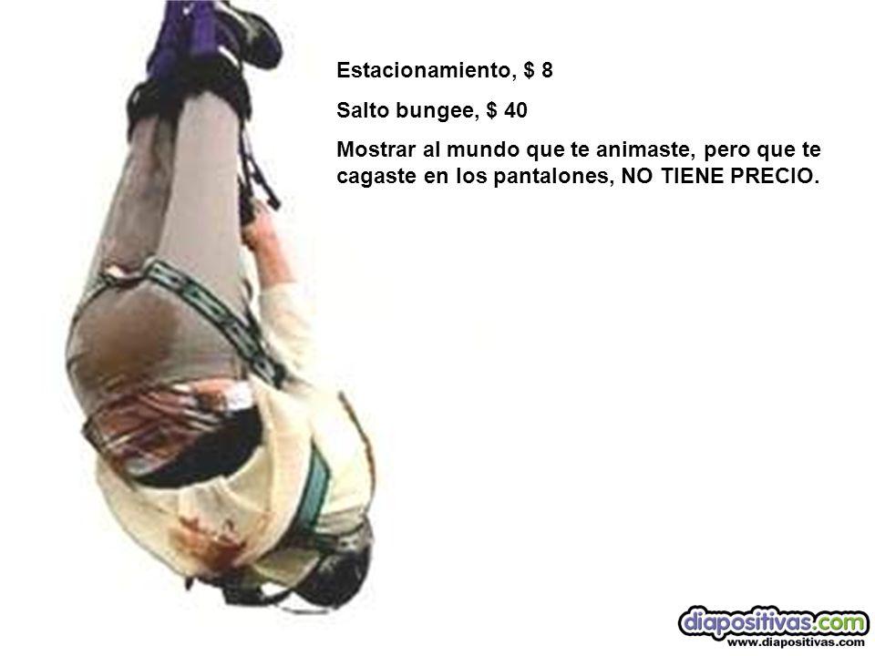 Estacionamiento, $ 8 Salto bungee, $ 40 Mostrar al mundo que te animaste, pero que te cagaste en los pantalones, NO TIENE PRECIO.