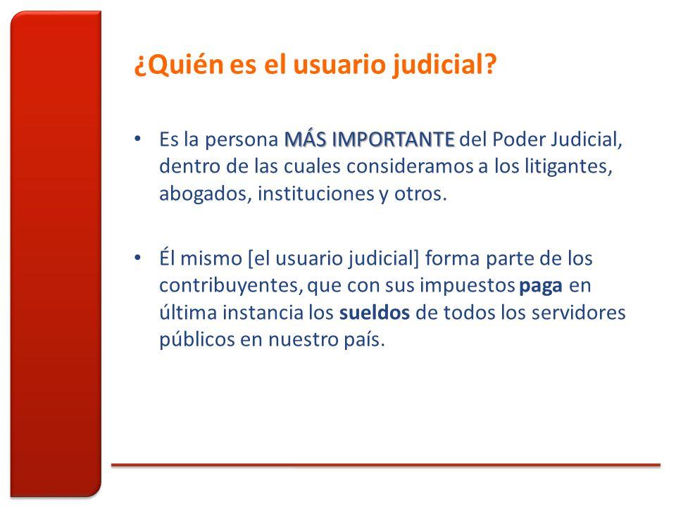 ¿Quién es el usuario judicial.