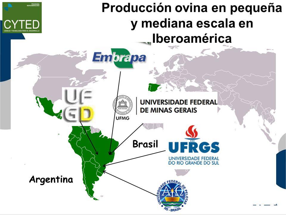Producción ovina en pequeña y mediana escala en Iberoamérica Argentina Brasil