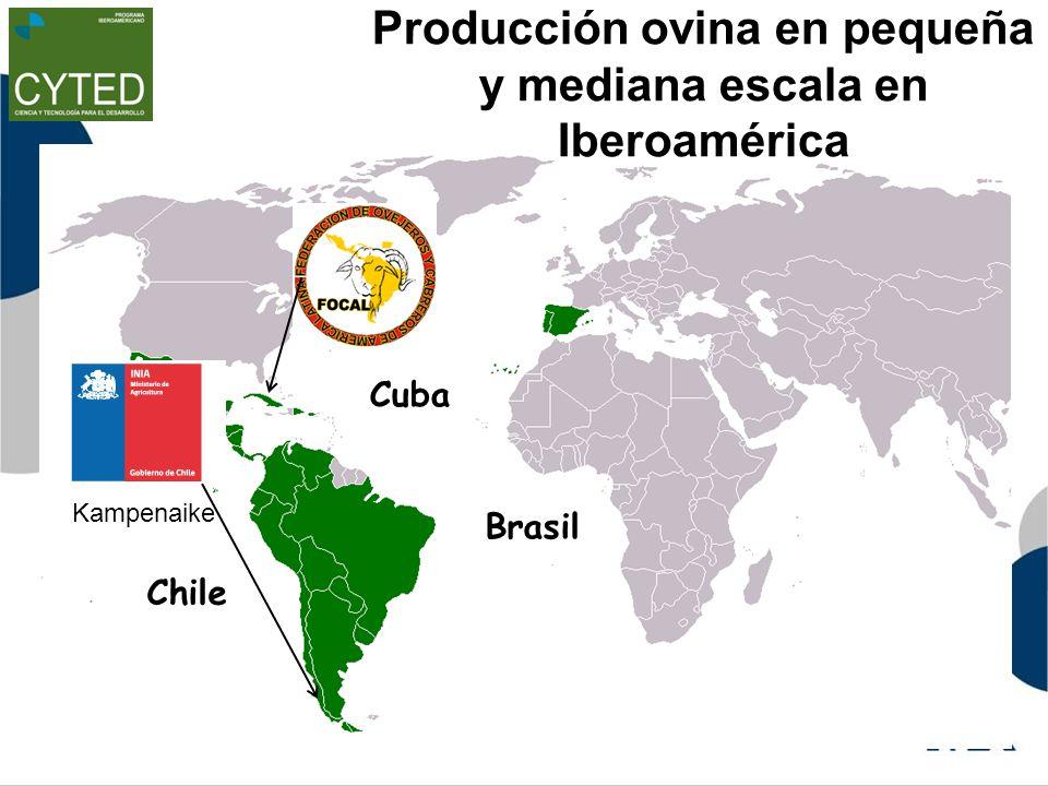 Producción ovina en pequeña y mediana escala en Iberoamérica Chile Brasil Kampenaike Cuba