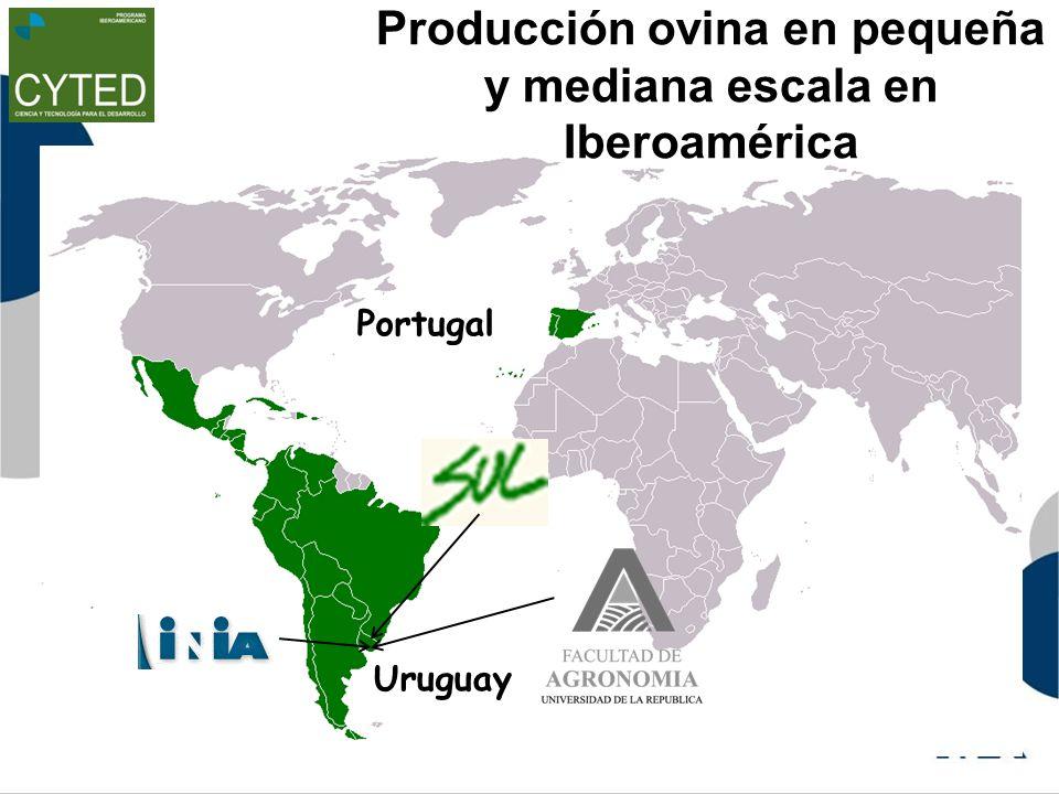 Producción ovina en pequeña y mediana escala en Iberoamérica Portugal Uruguay