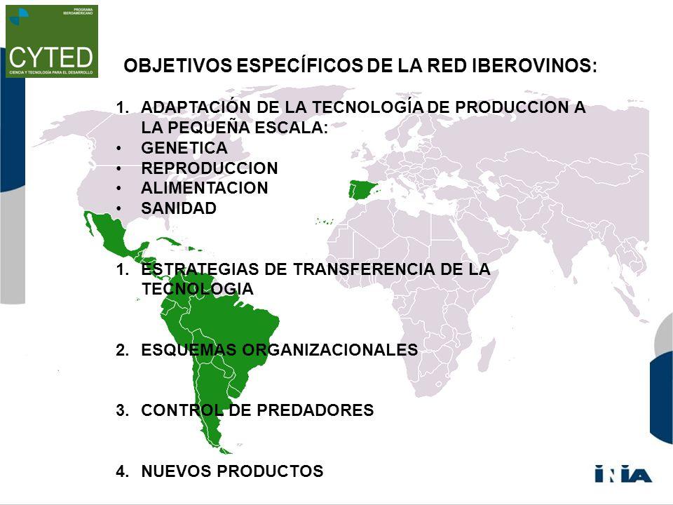 OBJETIVOS ESPECÍFICOS DE LA RED IBEROVINOS: 1.ADAPTACIÓN DE LA TECNOLOGÍA DE PRODUCCION A LA PEQUEÑA ESCALA: GENETICA REPRODUCCION ALIMENTACION SANIDAD 1.ESTRATEGIAS DE TRANSFERENCIA DE LA TECNOLOGIA 2.ESQUEMAS ORGANIZACIONALES 3.CONTROL DE PREDADORES 4.NUEVOS PRODUCTOS