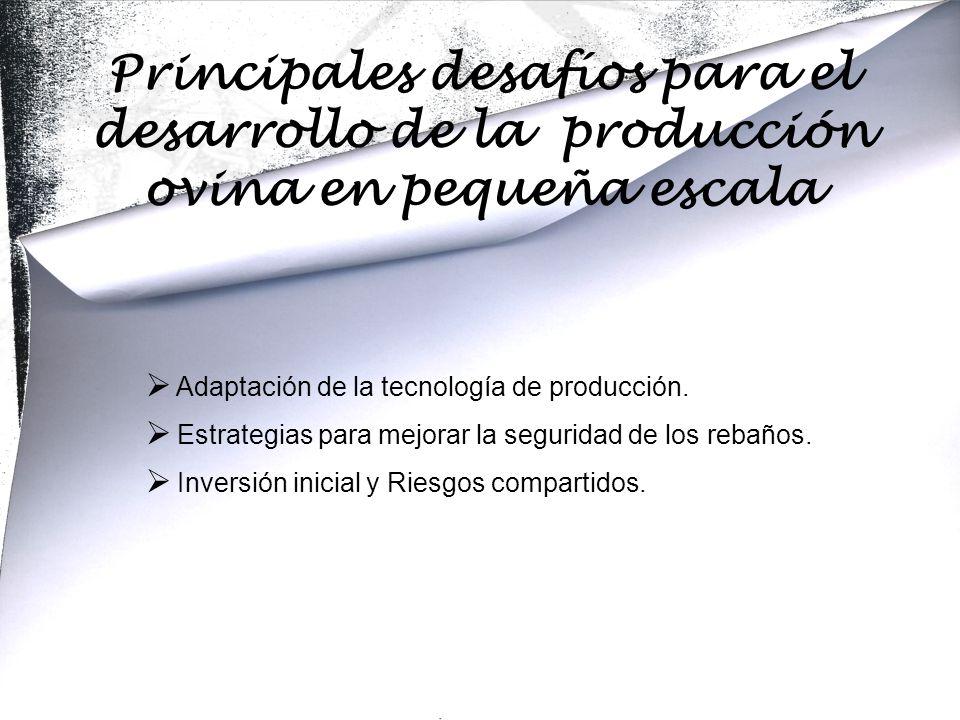  Adaptación de la tecnología de producción.