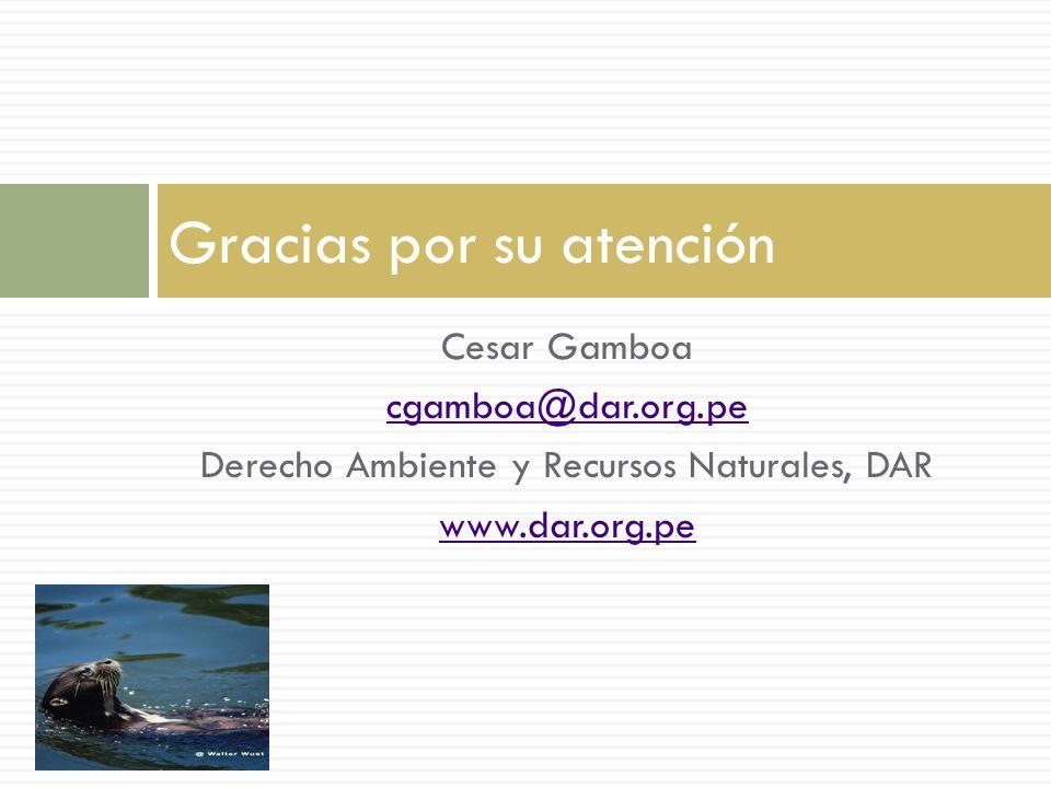 Cesar Gamboa cgamboa@dar.org.pe Derecho Ambiente y Recursos Naturales, DAR www.dar.org.pe Gracias por su atención