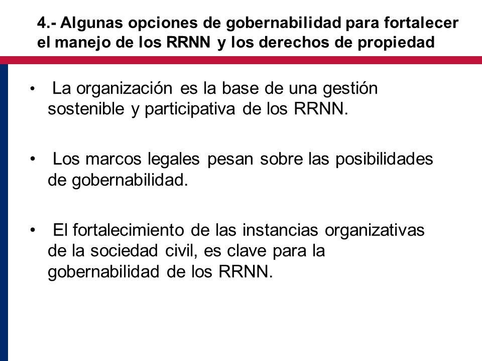 4.- Algunas opciones de gobernabilidad para fortalecer el manejo de los RRNN y los derechos de propiedad La organización es la base de una gestión sostenible y participativa de los RRNN.