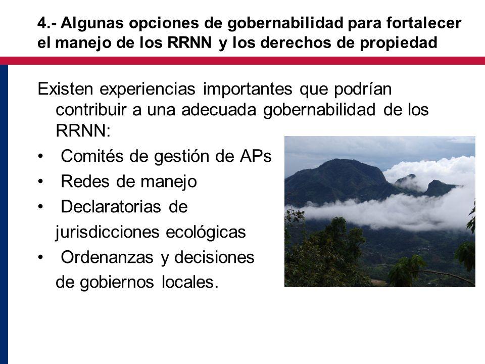 Existen experiencias importantes que podrían contribuir a una adecuada gobernabilidad de los RRNN: Comités de gestión de APs Redes de manejo Declaratorias de jurisdicciones ecológicas Ordenanzas y decisiones de gobiernos locales.