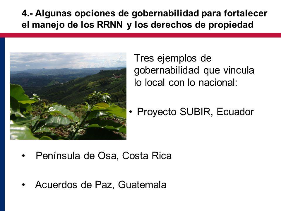Tres ejemplos de gobernabilidad que vincula lo local con lo nacional: Proyecto SUBIR, Ecuador Península de Osa, Costa Rica Acuerdos de Paz, Guatemala 4.- Algunas opciones de gobernabilidad para fortalecer el manejo de los RRNN y los derechos de propiedad