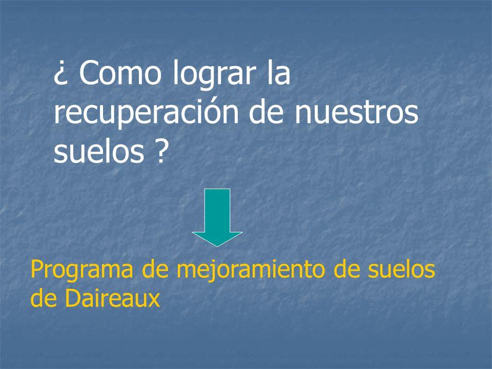 ¿ Como lograr la recuperación de nuestros suelos Programa de mejoramiento de suelos de Daireaux