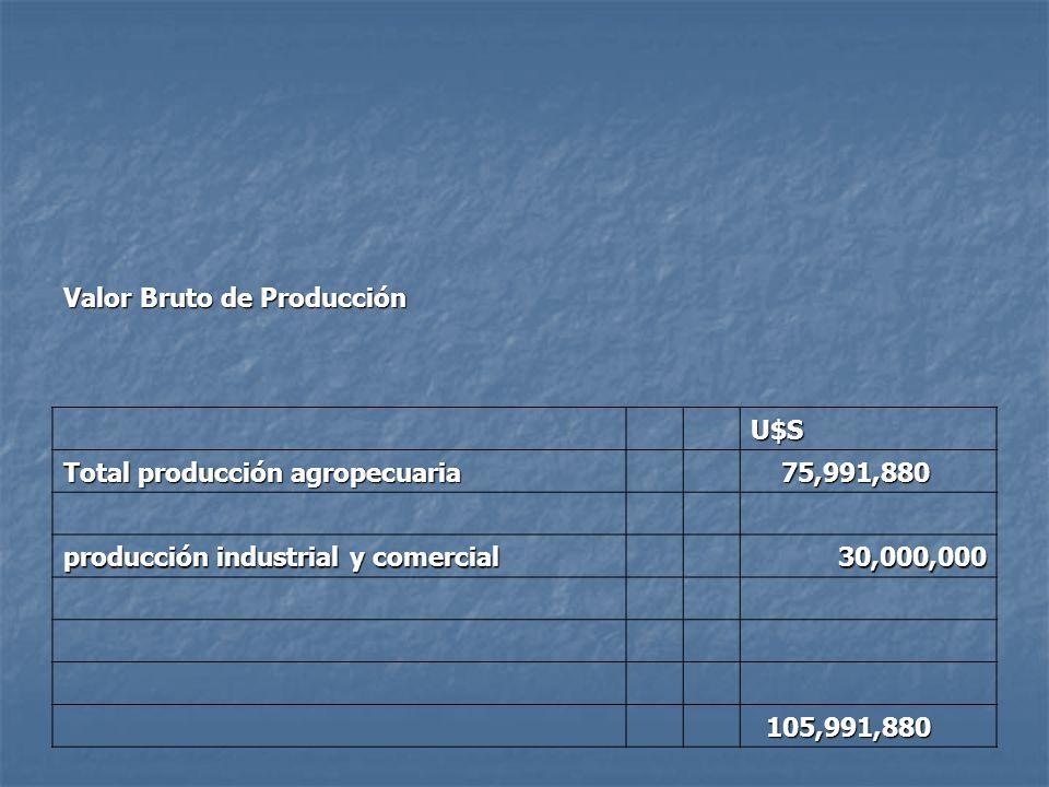 Valor Bruto de Producción U$S Total producción agropecuaria 75,991,880 75,991,880 producción industrial y comercial 30,000,000 105,991,880 105,991,880