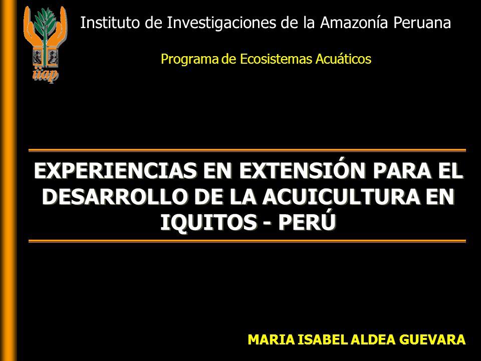 MARIA ISABEL ALDEA GUEVARA EXPERIENCIAS EN EXTENSIÓN PARA EL DESARROLLO DE LA ACUICULTURA EN IQUITOS - PERÚ Instituto de Investigaciones de la Amazonía Peruana Programa de Ecosistemas Acuáticos