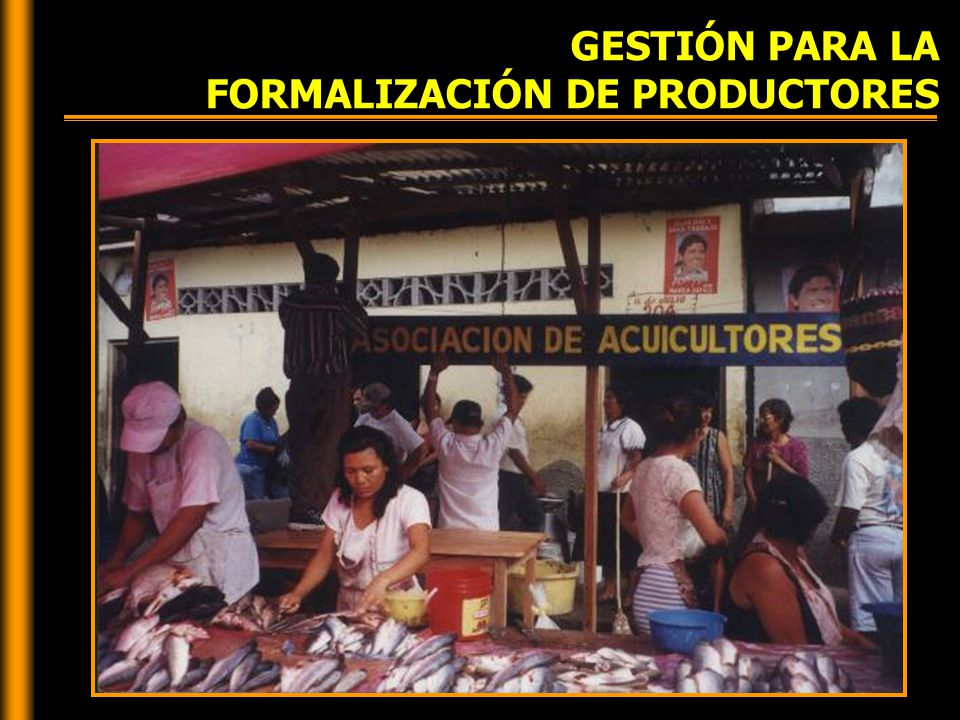 GESTIÓN PARA LA FORMALIZACIÓN DE PRODUCTORES