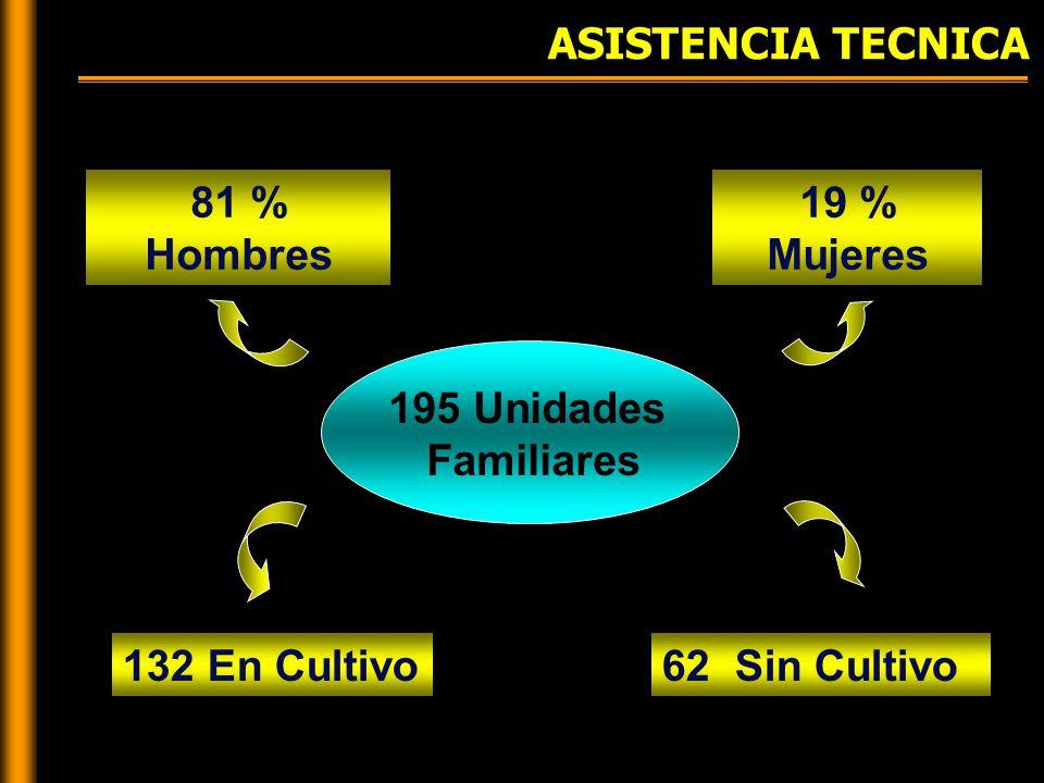 ASISTENCIA TECNICA 195 Unidades Familiares 81 % Hombres 19 % Mujeres 132 En Cultivo62 Sin Cultivo