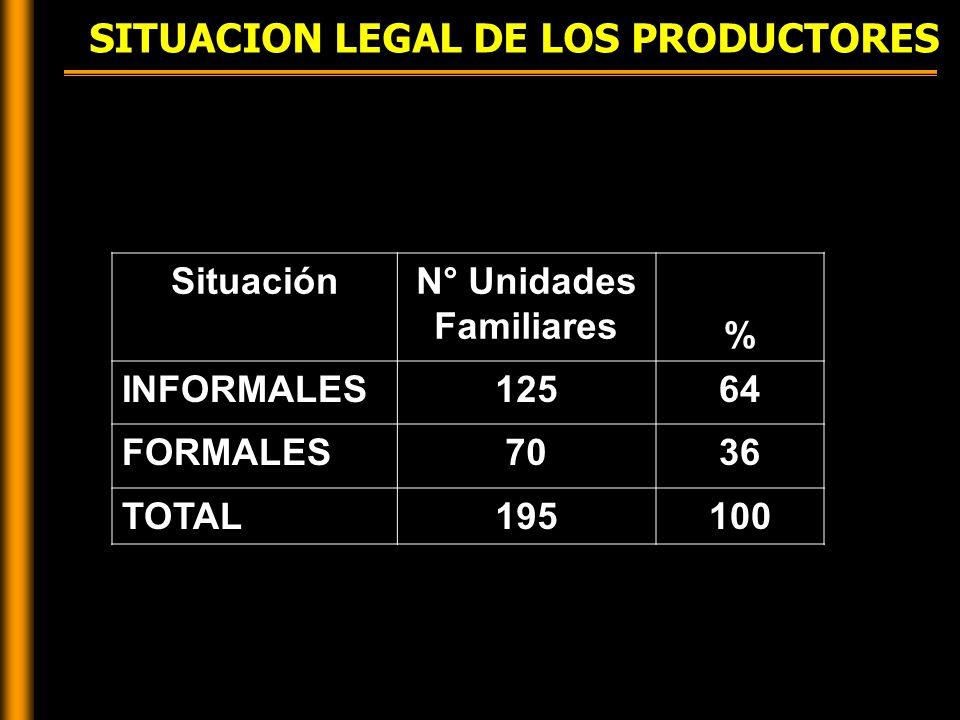 SITUACION LEGAL DE LOS PRODUCTORES SituaciónN° Unidades Familiares % INFORMALES12564 FORMALES7036 TOTAL195100