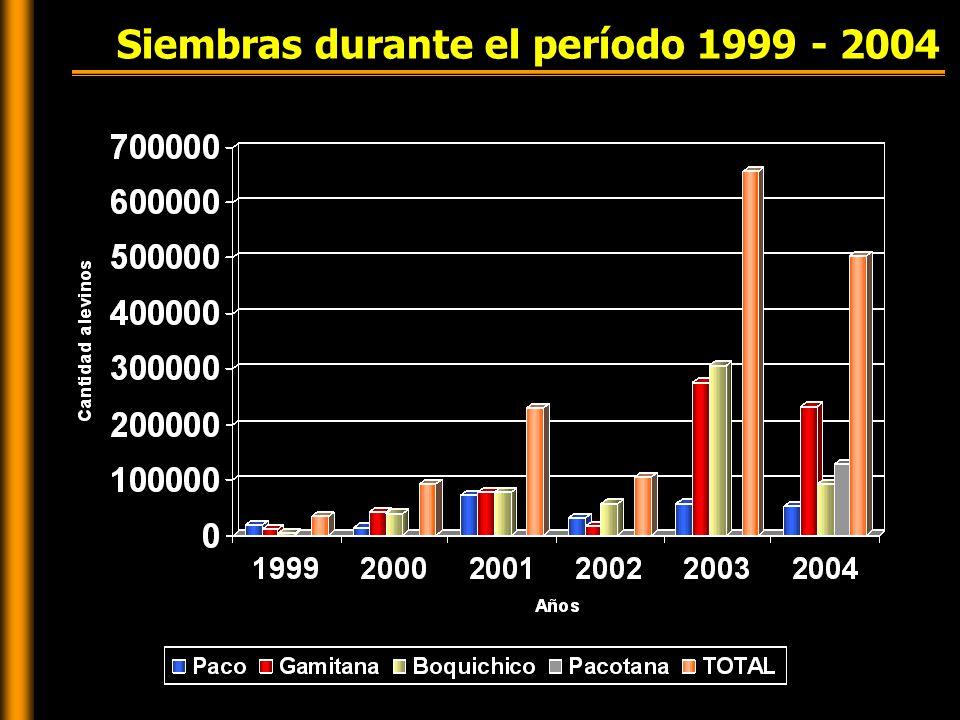 Siembras durante el período 1999 - 2004