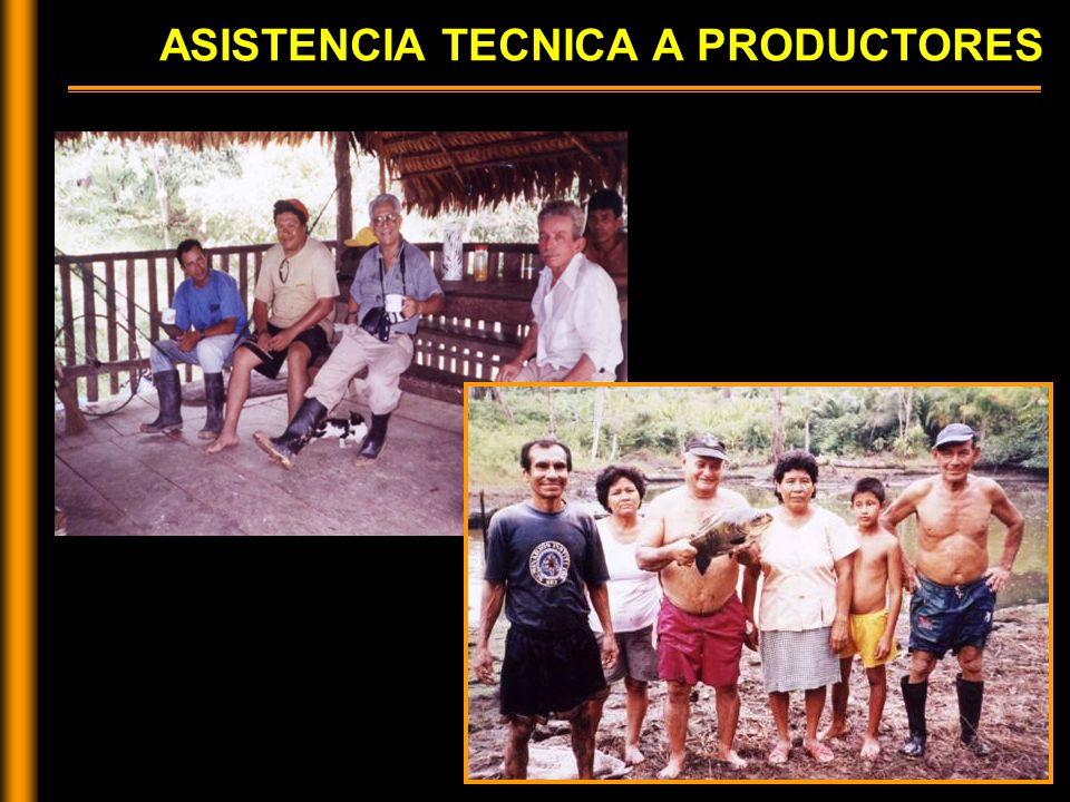 ASISTENCIA TECNICA A PRODUCTORES