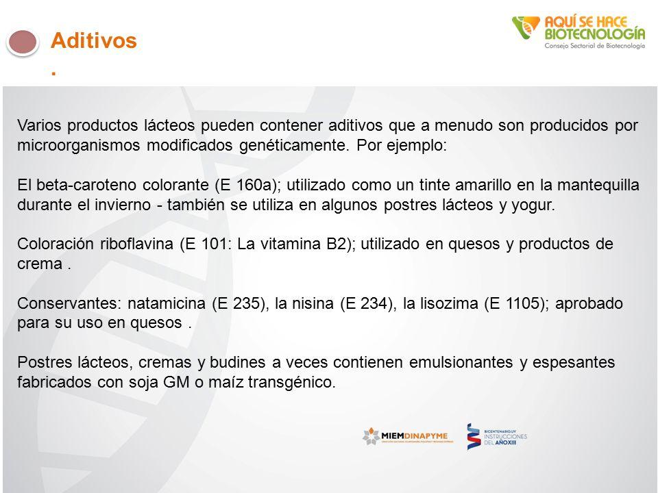 Varios productos lácteos pueden contener aditivos que a menudo son producidos por microorganismos modificados genéticamente.