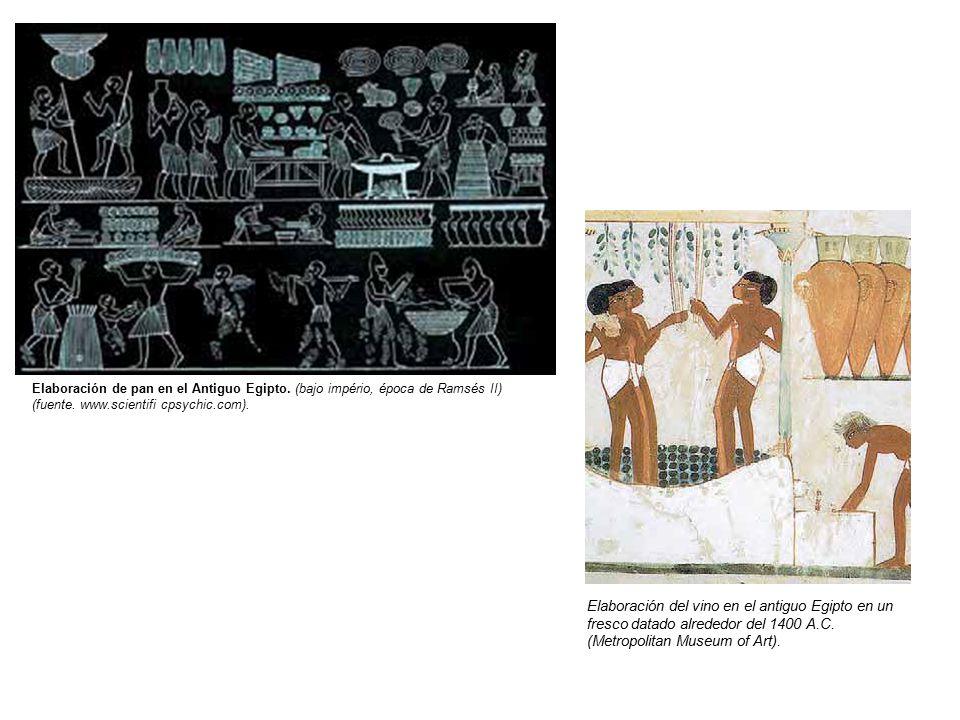 Elaboración de pan en el Antiguo Egipto. (bajo império, época de Ramsés II) (fuente.