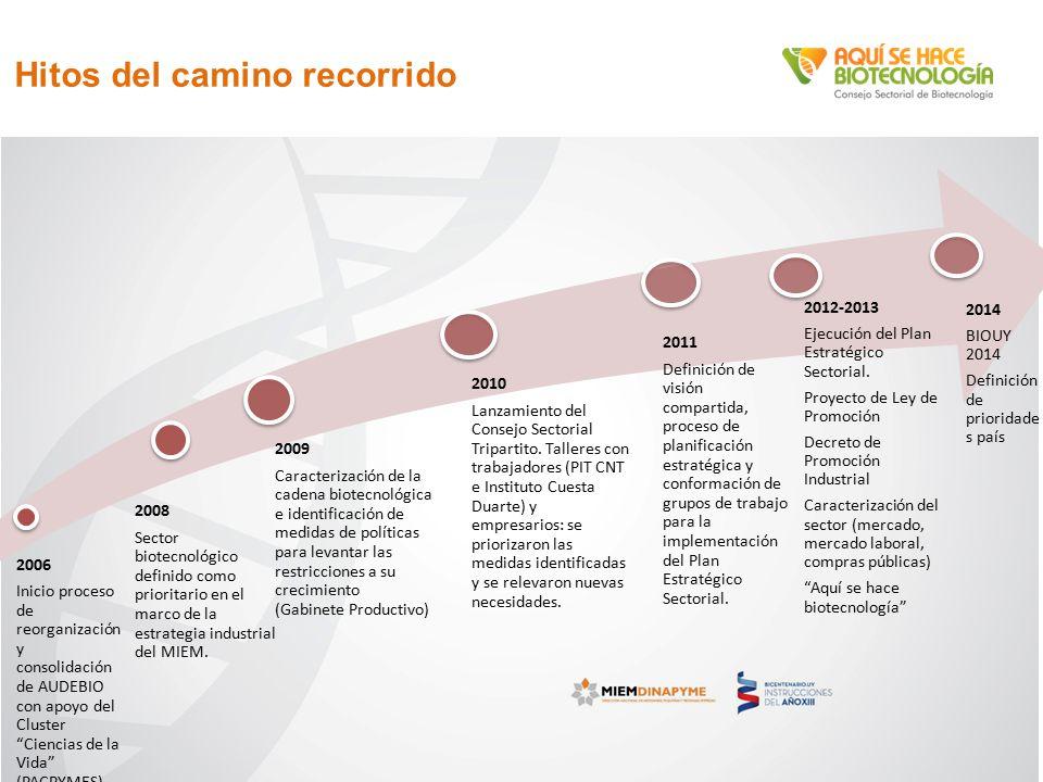Hitos del camino recorrido 2006 Inicio proceso de reorganización y consolidación de AUDEBIO con apoyo del Cluster Ciencias de la Vida (PACPYMES) 2008 Sector biotecnológico definido como prioritario en el marco de la estrategia industrial del MIEM.