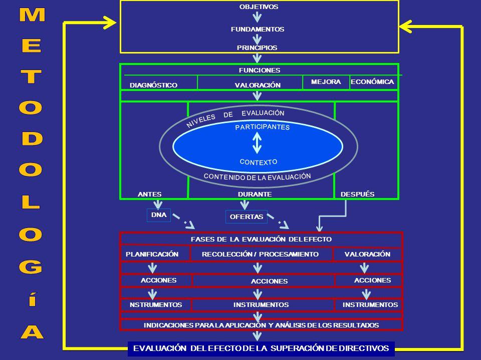 PRINCIPIOS OBJETIVOS FUNDAMENTOS INDICACIONES PARA LA APLICACIÓN Y ANÁLISIS DE LOS RESULTADOS EVALUACIÓN DEL EFECTO DE LA SUPERACIÓN DE DIRECTIVOS ANTESDURANTEDESPUÉS NSTRUMENTOS INSTRUMENTOS ACCIONES FUNCIONES DIAGNÓSTICO MEJORA VALORACIÓN RECOLECCIÓN / PROCESAMIENTOVALORACIÓN FASES DE LA EVALUACIÓN DEL EFECTO PLANIFICACIÓN ECONÓMICA DNA OFERTAS