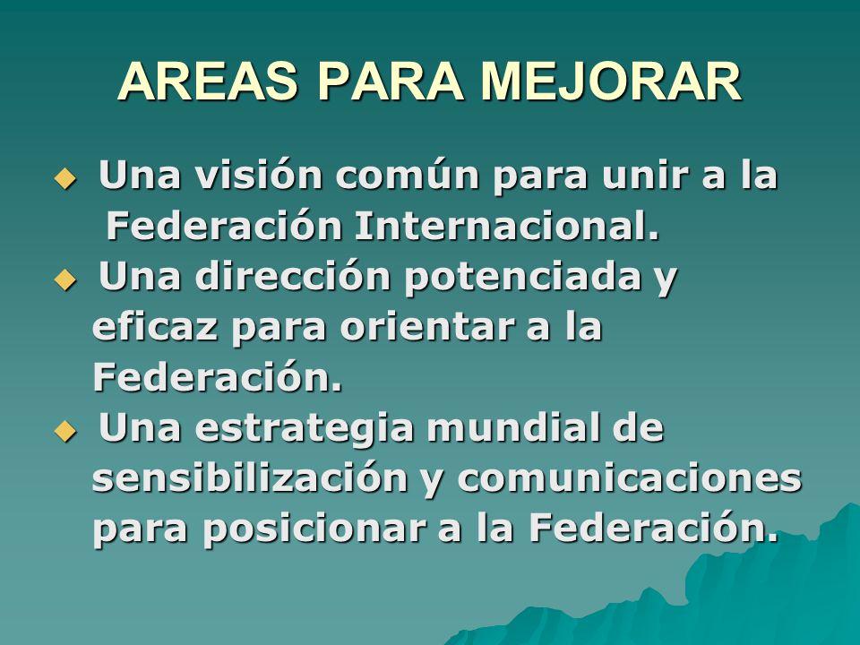 AREAS PARA MEJORAR  Una visión común para unir a la Federación Internacional.
