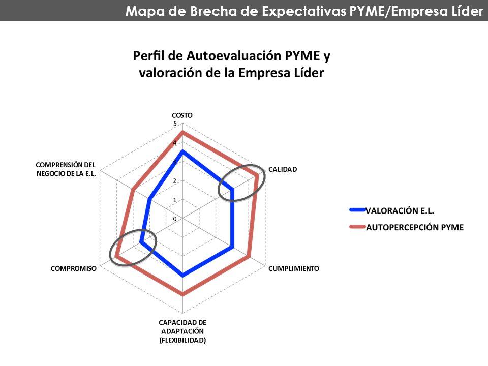 Mapa de Brecha de Expectativas PYME/Empresa Líder
