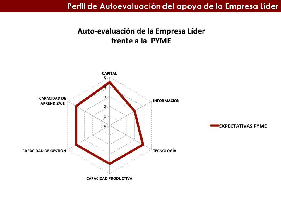 Perfil de Autoevaluación del apoyo de la Empresa Líder