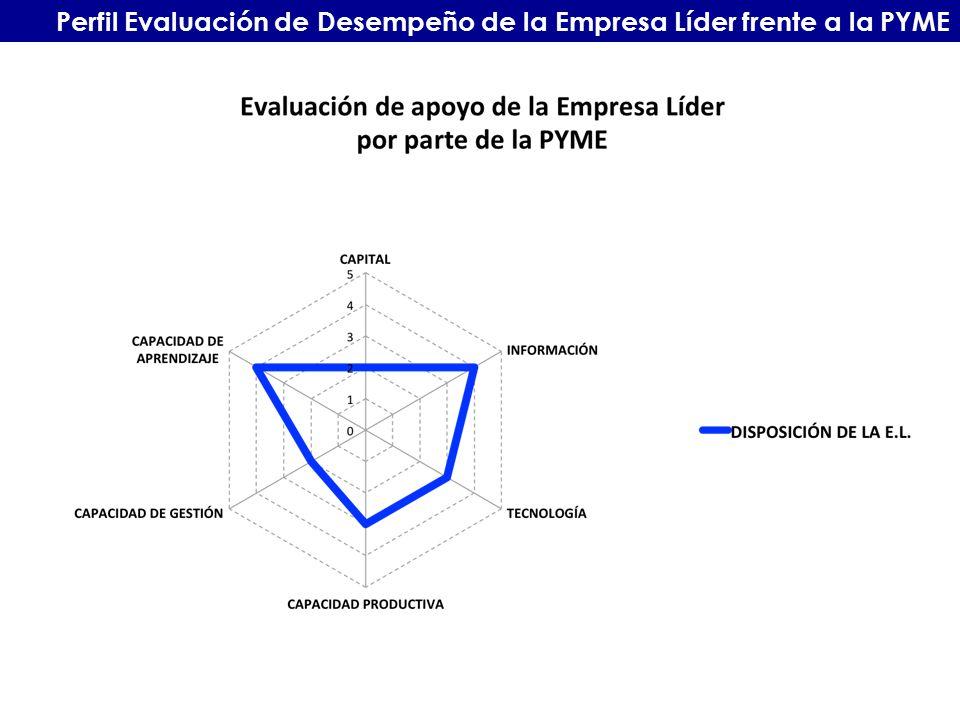 Perfil Evaluación de Desempeño de la Empresa Líder frente a la PYME