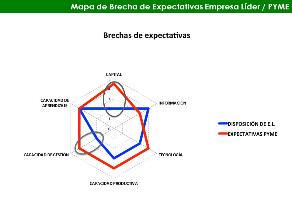 Mapa de Brecha de Expectativas Empresa Líder / PYME
