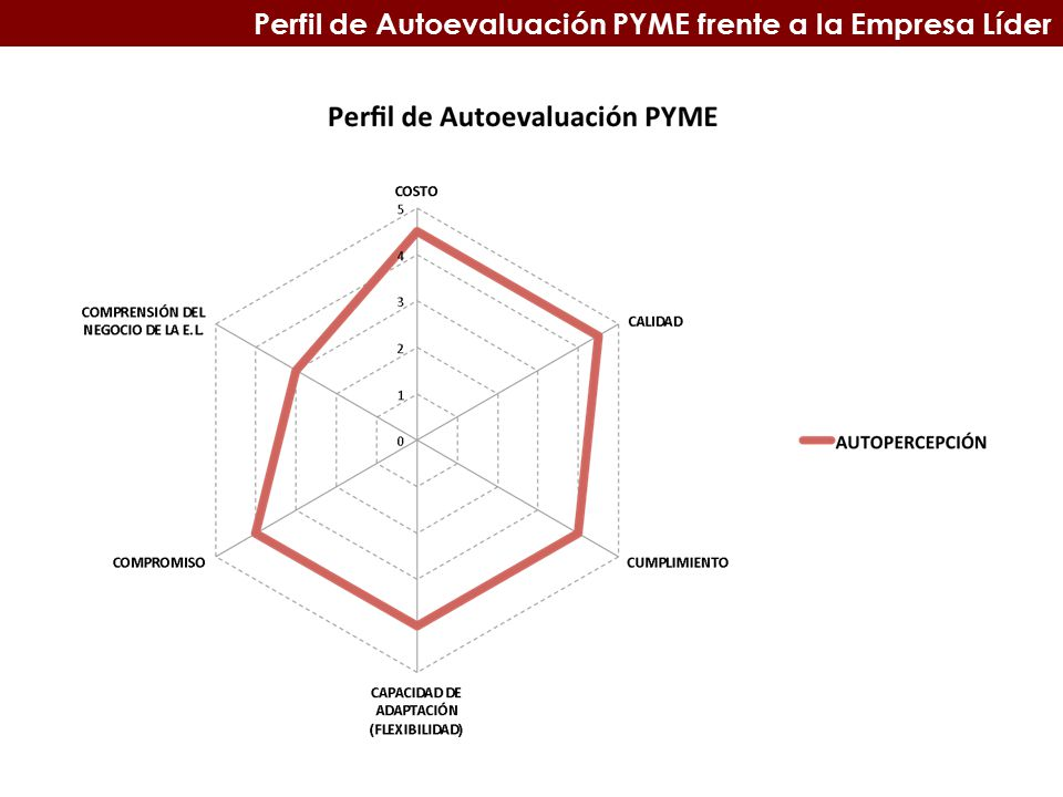 Perfil de Autoevaluación PYME frente a la Empresa Líder