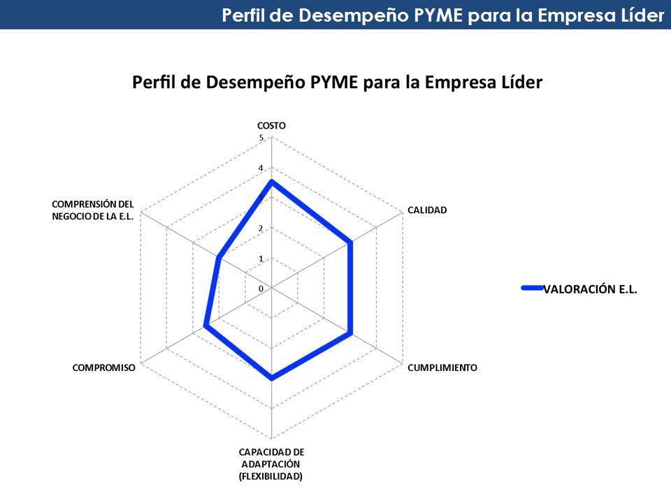 Perfil de Desempeño PYME para la Empresa Líder
