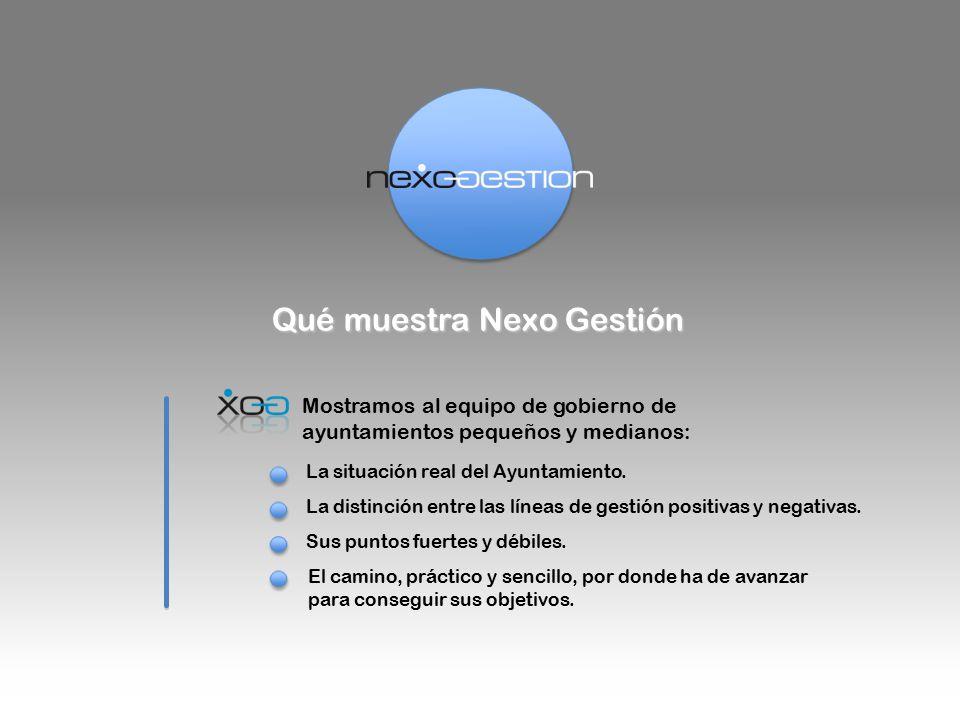 Qué muestra Nexo Gestión Mostramos al equipo de gobierno de ayuntamientos pequeños y medianos: La situación real del Ayuntamiento.