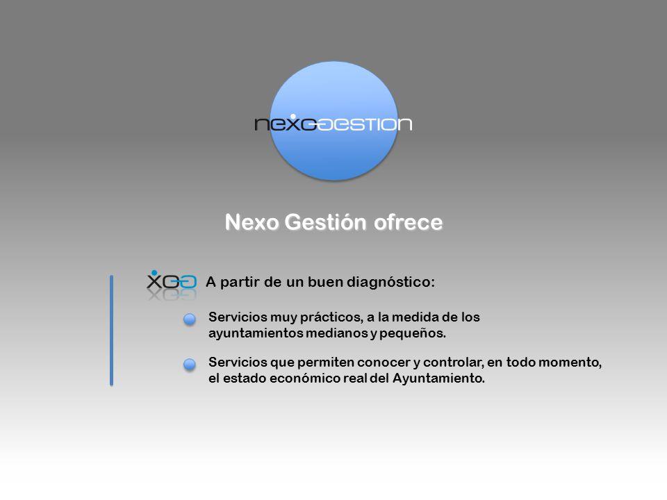 Nexo Gestión ofrece A partir de un buen diagnóstico: Servicios muy prácticos, a la medida de los ayuntamientos medianos y pequeños.