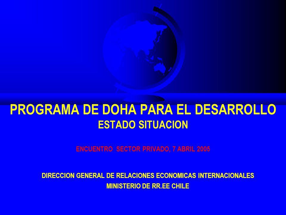 PROGRAMA DE DOHA PARA EL DESARROLLO ESTADO SITUACION ENCUENTRO SECTOR PRIVADO, 7 ABRIL 2005 DIRECCION GENERAL DE RELACIONES ECONOMICAS INTERNACIONALES MINISTERIO DE RR.EE CHILE