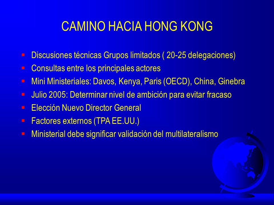 CAMINO HACIA HONG KONG  Discusiones técnicas Grupos limitados ( 20-25 delegaciones)  Consultas entre los principales actores  Mini Ministeriales: Davos, Kenya, Paris (OECD), China, Ginebra  Julio 2005: Determinar nivel de ambición para evitar fracaso  Elección Nuevo Director General  Factores externos (TPA EE.UU.)  Ministerial debe significar validación del multilateralismo
