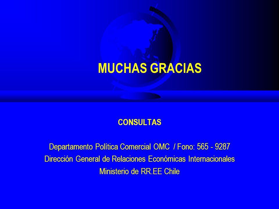 CONSULTAS Departamento Política Comercial OMC / Fono: 565 - 9287 Dirección General de Relaciones Económicas Internacionales Ministerio de RR.EE Chile MUCHAS GRACIAS