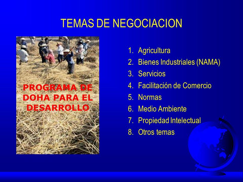 TEMAS DE NEGOCIACION 1.Agricultura 2.Bienes Industriales (NAMA) 3.Servicios 4.Facilitación de Comercio 5.Normas 6.Medio Ambiente 7.Propiedad Intelectual 8.Otros temas PROGRAMA DE DOHA PARA EL DESARROLLO
