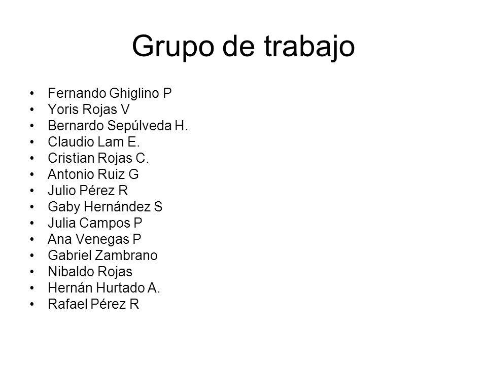 Grupo de trabajo Fernando Ghiglino P Yoris Rojas V Bernardo Sepúlveda H.