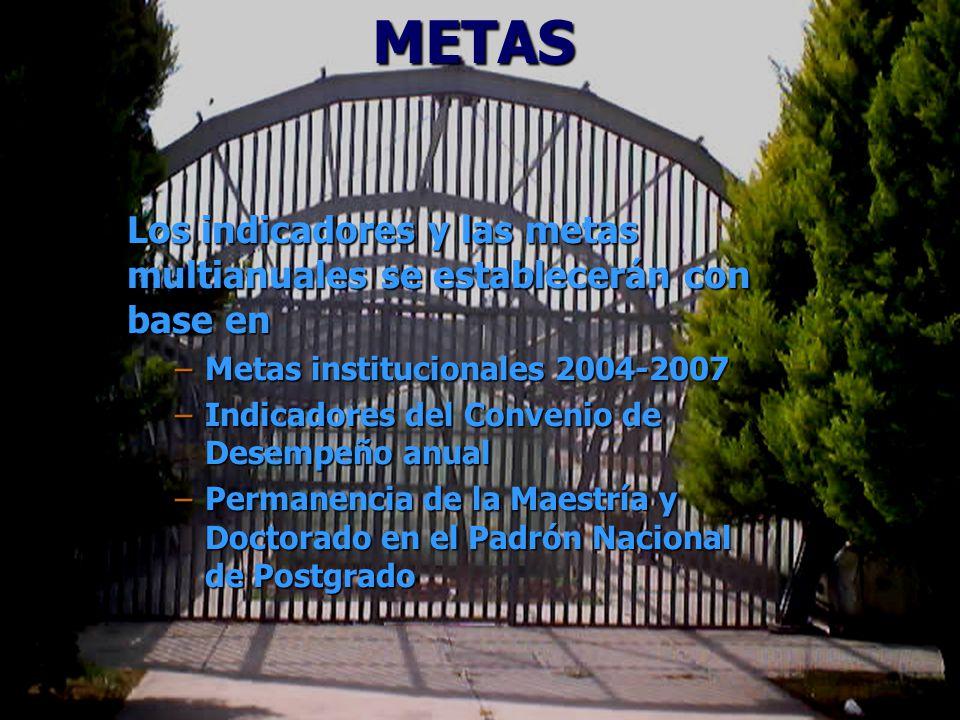 METAS Los indicadores y las metas multianuales se establecerán con base en –Metas institucionales 2004-2007 –Indicadores del Convenio de Desempeño anual –Permanencia de la Maestría y Doctorado en el Padrón Nacional de Postgrado
