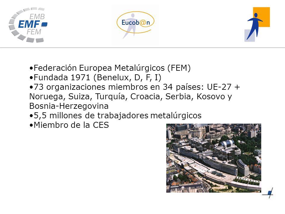 Federación Europea Metalúrgicos (FEM) Fundada 1971 (Benelux, D, F, I) 73 organizaciones miembros en 34 países: UE-27 + Noruega, Suiza, Turquía, Croacia, Serbia, Kosovo y Bosnia-Herzegovina 5,5 millones de trabajadores metalúrgicos Miembro de la CES