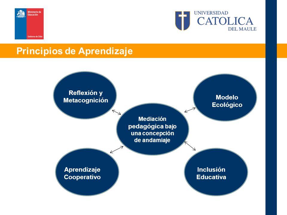 Principios de Aprendizaje Mediación pedagógica bajo una concepción de andamiaje Modelo Ecológico Aprendizaje Cooperativo Inclusión Educativa Reflexión y Metacognición