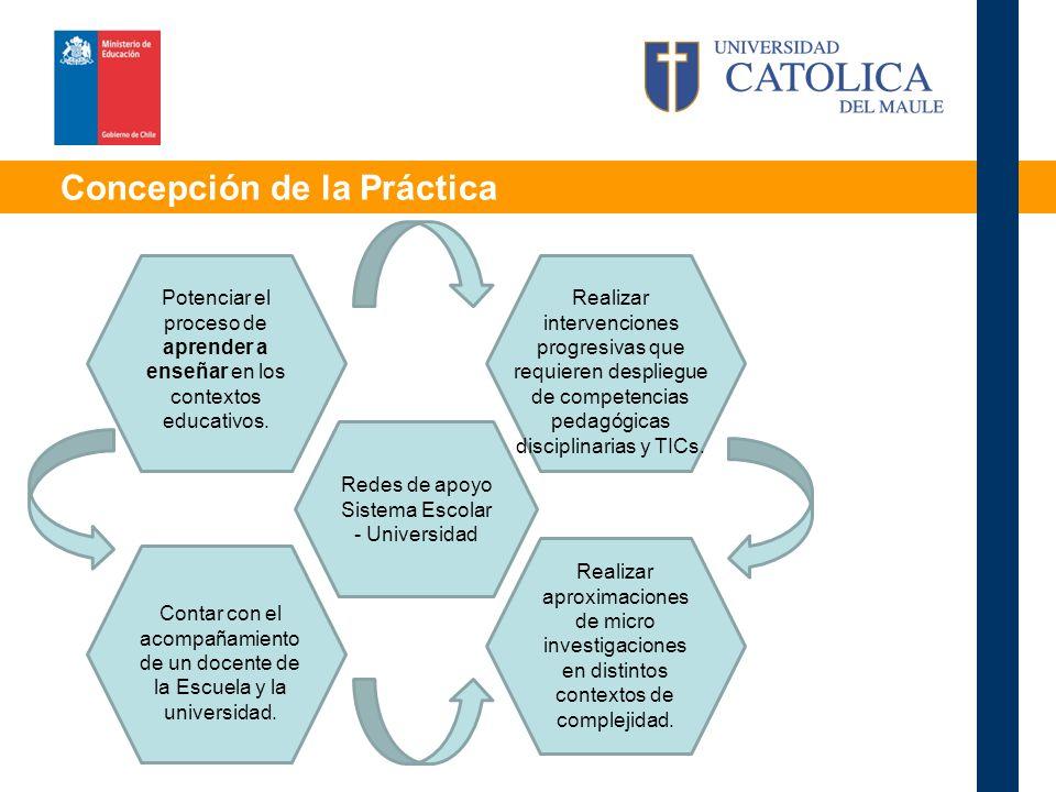 Concepción de la Práctica Potenciar el proceso de aprender a enseñar en los contextos educativos.