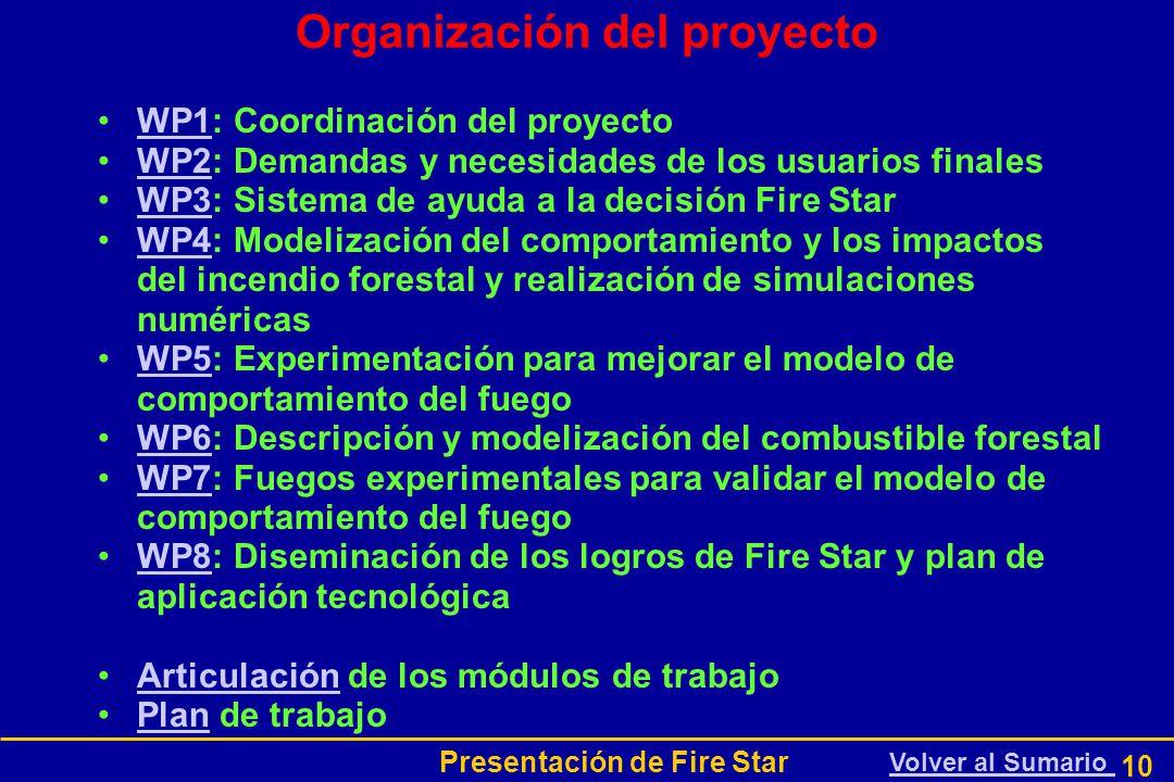 Presentación de Fire Star 10 Organización del proyecto WP1: Coordinación del proyectoWP1 WP2: Demandas y necesidades de los usuarios finalesWP2 WP3: Sistema de ayuda a la decisión Fire StarWP3 WP4: Modelización del comportamiento y los impactos del incendio forestal y realización de simulaciones numéricasWP4 WP5: Experimentación para mejorar el modelo de comportamiento del fuegoWP5 WP6: Descripción y modelización del combustible forestalWP6 WP7: Fuegos experimentales para validar el modelo de comportamiento del fuegoWP7 WP8: Diseminación de los logros de Fire Star y plan de aplicación tecnológicaWP8 Articulación de los módulos de trabajoArticulación Plan de trabajoPlan Volver al Sumario