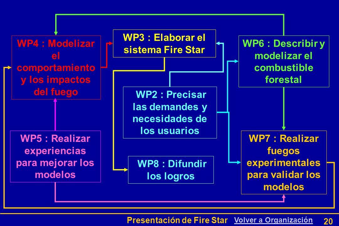 Presentación de Fire Star 20 WP2 : Precisar las demandes y necesidades de los usuarios WP6 : Describir y modelizar el combustible forestal WP5 : Realizar experiencias para mejorar los modelos WP7 : Realizar fuegos experimentales para validar los modelos WP4 : Modelizar el comportamiento y los impactos del fuego WP8 : Difundir los logros WP3 : Elaborar el sistema Fire Star Volver a Organización