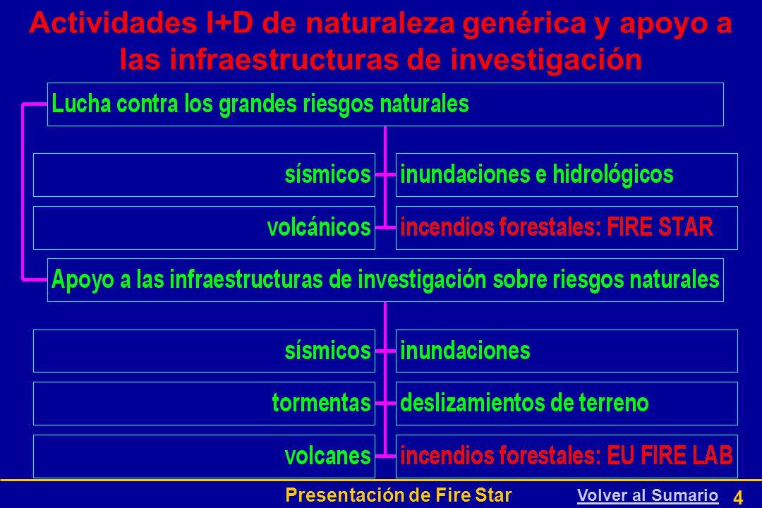 Presentación de Fire Star 4 Actividades I+D de naturaleza genérica y apoyo a las infraestructuras de investigación Volver al Sumario