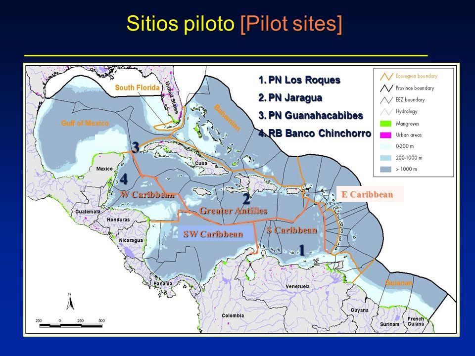 Sitios piloto [Pilot sites] 1.PN Los Roques 2.PN Jaragua 3.PN Guanahacabibes 4.RB Banco Chinchorro 3 1 4 2 S Caribbean E Caribbean W Caribbean SW Caribbean Greater Antilles