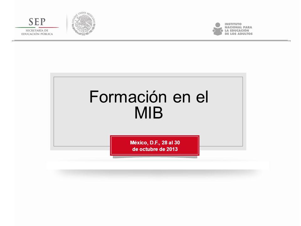 Formación en el MIB México, D.F., 28 al 30 de octubre de 2013