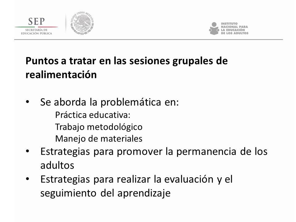 Puntos a tratar en las sesiones grupales de realimentación Se aborda la problemática en: Práctica educativa: Trabajo metodológico Manejo de materiales Estrategias para promover la permanencia de los adultos Estrategias para realizar la evaluación y el seguimiento del aprendizaje