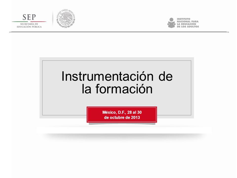 Instrumentación de la formación México, D.F., 28 al 30 de octubre de 2013