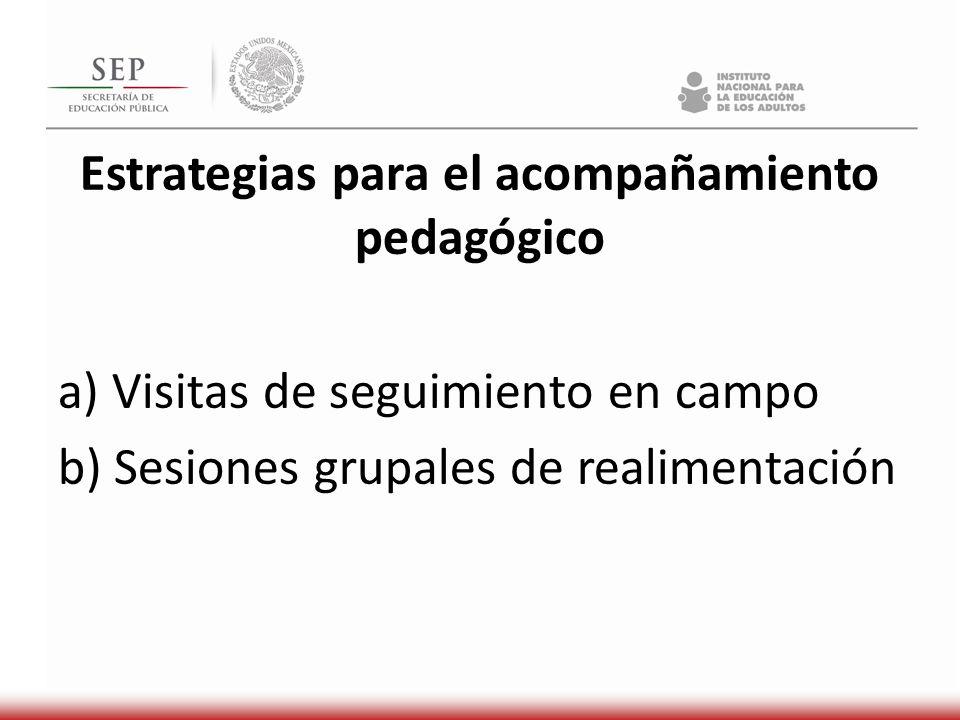 Estrategias para el acompañamiento pedagógico a) Visitas de seguimiento en campo b) Sesiones grupales de realimentación